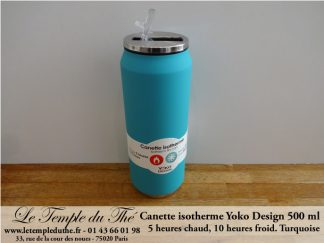 Canette isotherme turquoise 500 ml