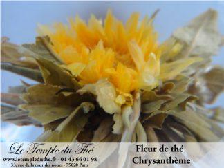 25 fleurs de thés fleur de Chrysanthème