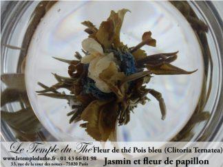 25 fleurs de thés Jasmin et Pois bleu