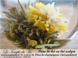 FLEURS DE THE