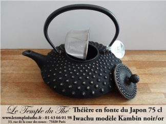 THEIERES IWACHU EN FONTE DU JAPON A PARIS
