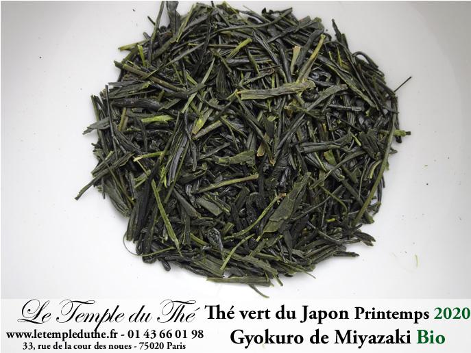 Thé vert Japonais de printemps Gyokuro de Miyazaki 2020 bio