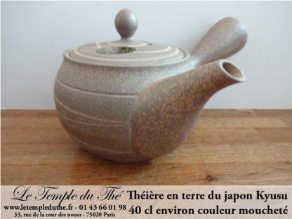 Kyusu japonais Design