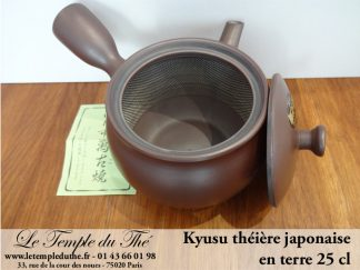 Théière du Japon Kyusu marron 25 cl