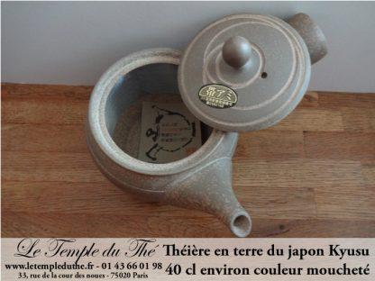 Kyusu en terre du Japon Tokoname 0.4 L