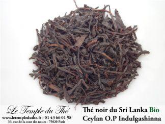 Thé noir du Sri Lanka Ceylan