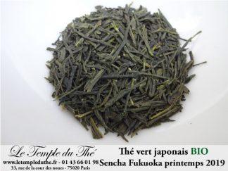 Thé vert bio du Japon