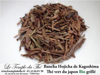 Thé vert du Japon Kagoshima Bancha Hojicha Bio