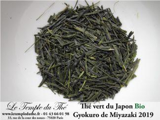 Thé vert Japonais de printemps Gyokuro de Miyazaki 2019 bio