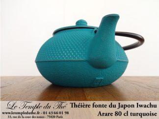 Théière en fonte du Japon