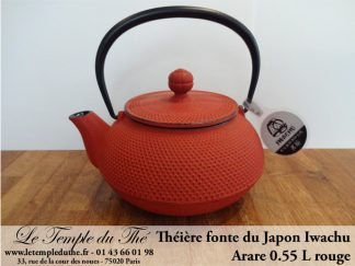 Théière du Japon à Paris