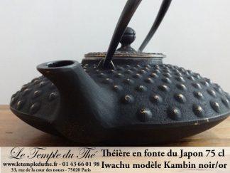 Theiere fonte japonaise noir