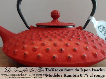 Theiere Japon Iwachu Kanbin