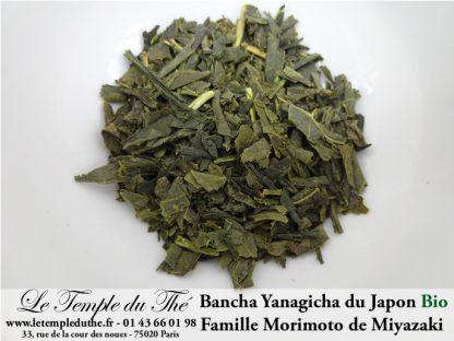 Thé vert du Japon BIO Bancha Yanagicha Printemps 2020 petits producteurs